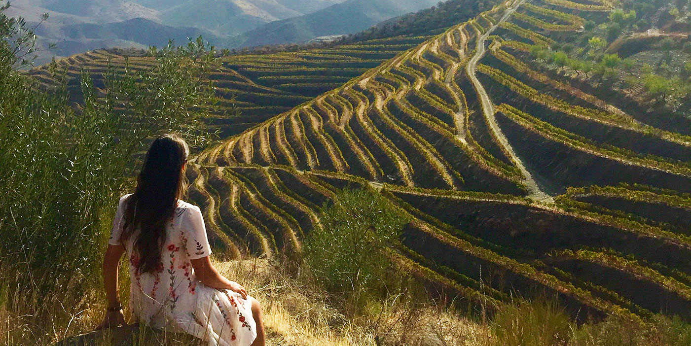 Sleep in The Best Vineyards in The Douro Valley