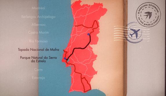 Queijo Serra da Estrela: Une recette de fromage unique transmise de génération en génération