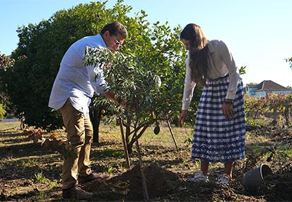 A day at the Ferreira family home in Estarreja